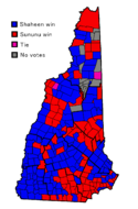 Nh senate race 2008.png