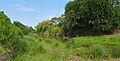 Nhlanganini Crossing (17089003529).jpg
