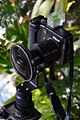 Nikon COOLPIX P6000 + FC-E8.jpg