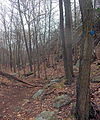 Notch Trail descending Breakneck Ridge.jpg