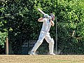Nuthurst CC v. Henfield CC at Mannings Heath, West Sussex, England 014.jpg