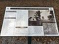 Oak Alley Plantation Views 01.jpg