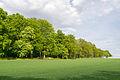 Oerlinghausen - 2015-05-08 - ND Rotbuchenallee (1).jpg