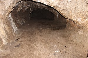 Bontnewydd Palaeolithic site - cave entry