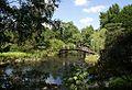 Ogród Botaniczny - mostek fot BMaliszewska.jpg