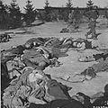 Ohrdruf Corpses 05260.jpg