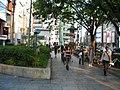Omotesando - panoramio - Roman Suzuki (2).jpg