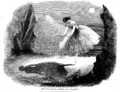 Ondine - Illustrated London News.png