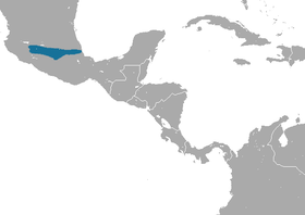 Orizaba Long-tailed Shrew area.png