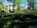 Orto botanico, fi, siepi di bosso.JPG