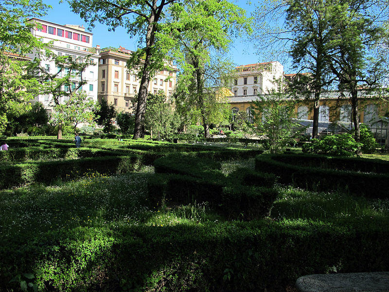 File orto botanico fi siepi di bosso jpg wikimedia commons for Giardino orto botanico firenze