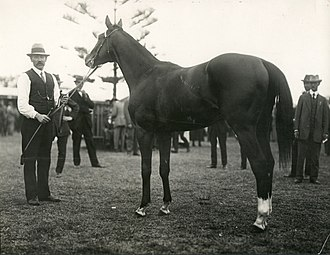 Champagne Stakes (ATC) - Outlook, 1918 winner