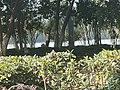 Outside of Hefei Xishan Scenic Spot.jpg