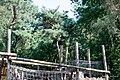 Ouwehands Dierenpark (14875452690).jpg