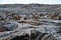 Pāhoehoe-Lava - panoramio.jpg