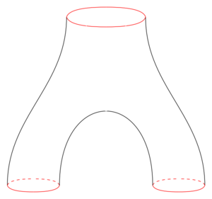 Commutative ring - A pair of pants is a cobordism between a circle and two disjoint circles. Cobordism classes, with the cartesian product as multiplication and disjoint union as the sum, form the cobordism ring.