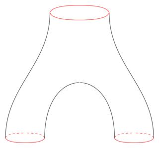 Pair of pants (mathematics) Three holed sphere