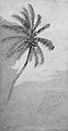 Palm Tree MET ap1973.346.3 recto.jpg