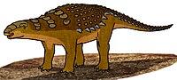 Panoplosaurus 055