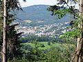 Panoramaweg Tiergarten Malschbach Blick vom Loiusfelsen.jpg