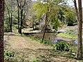 Parambikulam tiger Reserve - panoramio.jpg