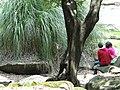 Park Scene - Chapultepec Park - Mexico City - Mexico - 04 (15399724836).jpg