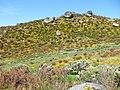 Parque Natural de Montesinho Porto Furado trail (5733162484).jpg