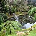 Parque Terra Nostra, Furnas, S. Miguel, Açores,Portugal - panoramio (34).jpg