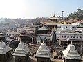 Pashupatinath Temple IMG 1496 40.jpg
