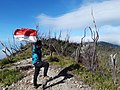 Pemandangan alam menuju puncak gunung talang solok sumatera barat 2597 Mdpl.jpg