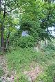 Perchtoldsdorf 8074.JPG