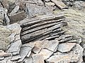 Physical weathering of volcanic rock.jpg