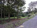 Picnic area looking west - geograph.org.uk - 992339.jpg