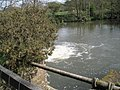 Pipeline near Terwick Mill - geograph.org.uk - 779304.jpg