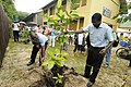 Planting a tree on the compound of La Digue school.jpg