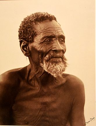 San people - Portrait of a bushman. Alfred Duggan-Cronin. South Africa, early 20th century. The Wellcome Collection, London