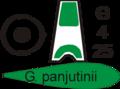 Poster galanthus panjutinii.png