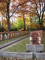 Могилы польских солдат на кладбище Повонзки в Варшаве