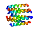 Protein DRD2 PDB 1I15.png