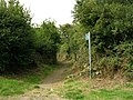 Public Bridleway near Benllech - geograph.org.uk - 38570.jpg