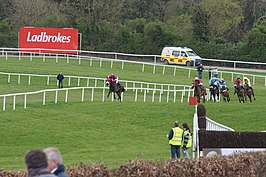 Racing at Punchestown in 2009