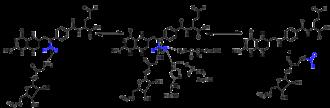 Formylation - Mechanism of PurN GAR transformylase