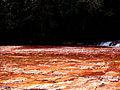 Quebrada de jaspe Gran sabana.jpg
