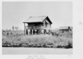 Queensland State Archives 4801 Clare State School with old school in the background Burdekin Shire c 1952.png