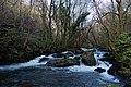 Río Pambre 2I2015 02.JPG