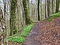 Rövarekulan trail -4.jpg