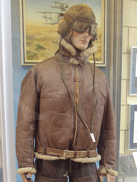 File:RAF Museum Cosford - DSC08289 (crop).jpg