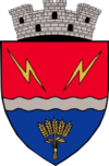 Coat of arms of Turceni