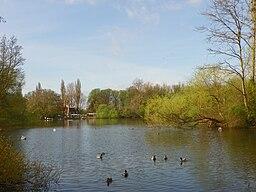 Radwell Lake, River Ivel, Radwell