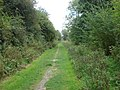 Railway Walk, Clare Country Park - geograph.org.uk - 979780.jpg